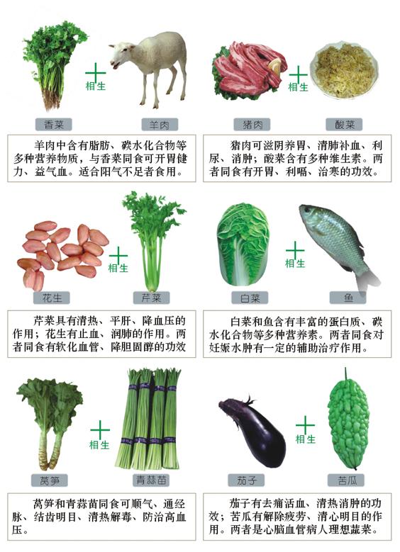 食物相生圖表
